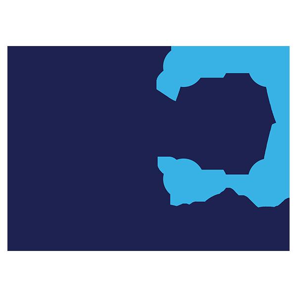 SSX Digital